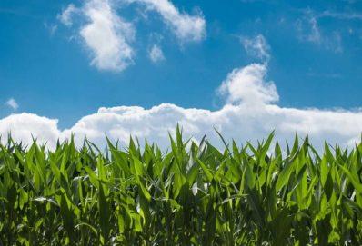 John Deere mezőgazdasági menedzsment