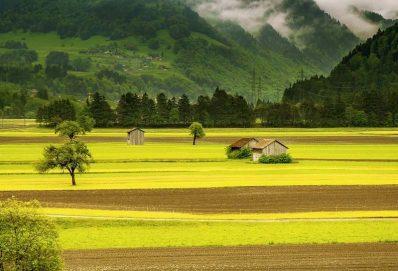 Zsúfolt időszakok a mezőgazdaságban