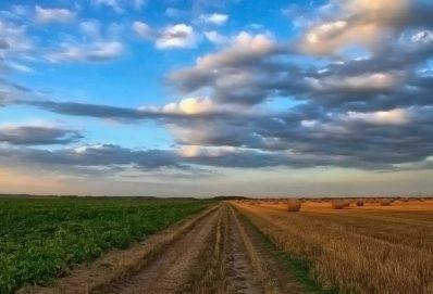 A mezőgazdaság jövője már elkezdődött
